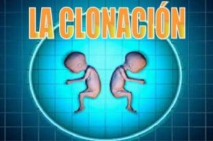 la clonacion